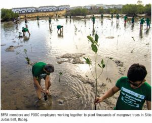 Pueblo de Oro Continues its Environmental Protection Advocacy: A Year-long Mangrove Tree-Planting Activity in Cebu