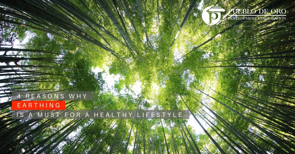 4 Reasons Why Earthing Is a Must for a Healthy Lifestyle