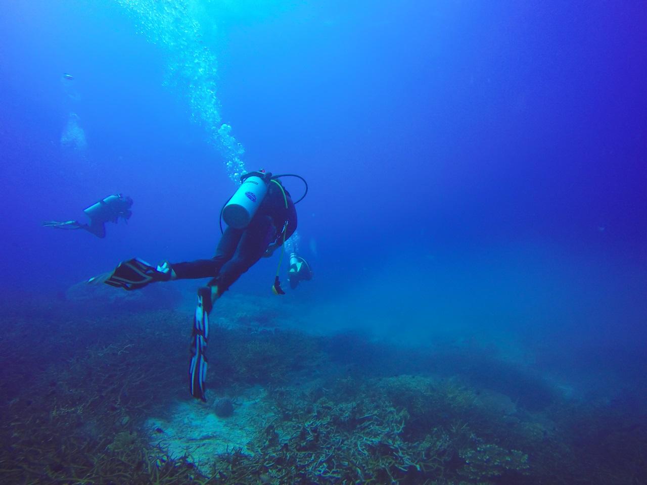 A deep sea diver in Malapascua