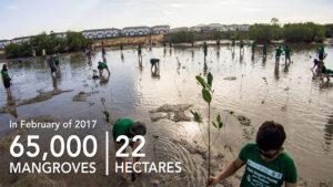 Pueblo De Oro Green Efforts